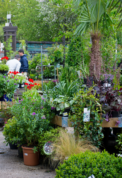 Support for Garden Centres